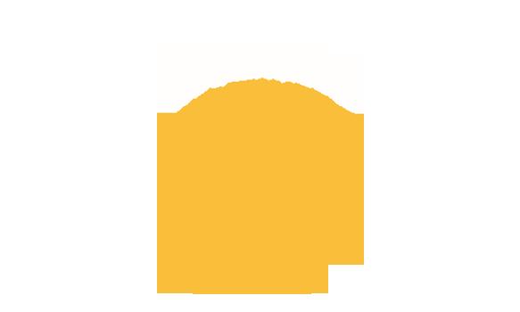IJsland IJs